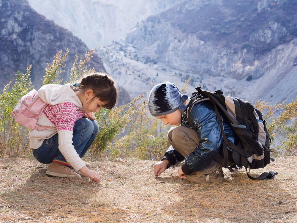 excursões pedagógicas