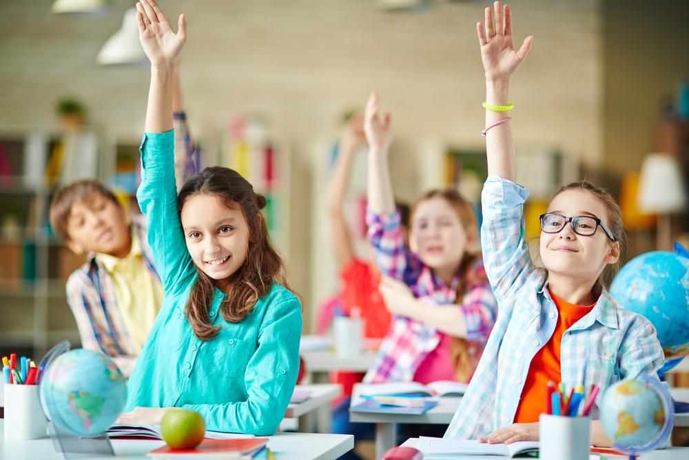 acompanhar o desenvolvimento escolar
